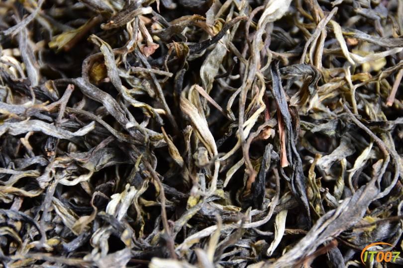 临沧古树春茶,还剩最后14公斤