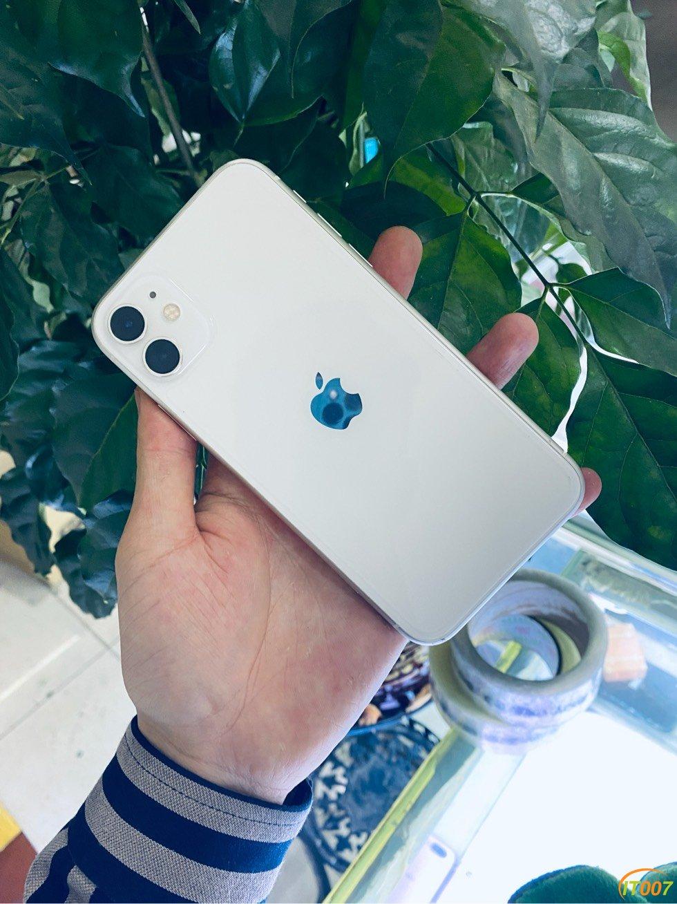 苹果11,白色,国行,64,成色9.5