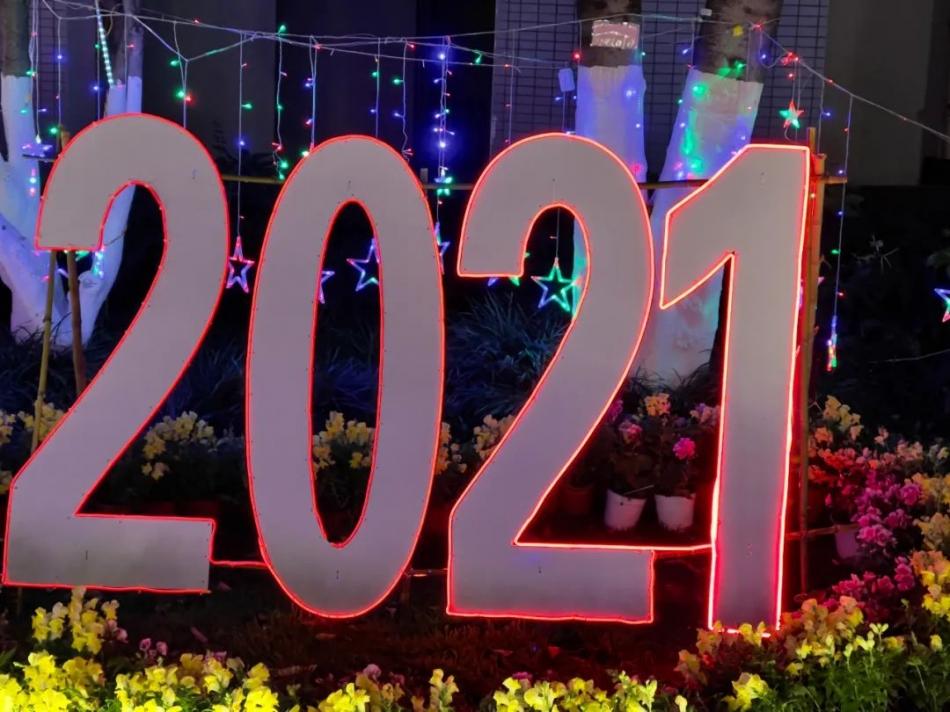 钱岗专栏:2020年终盘点:一块碎玻璃