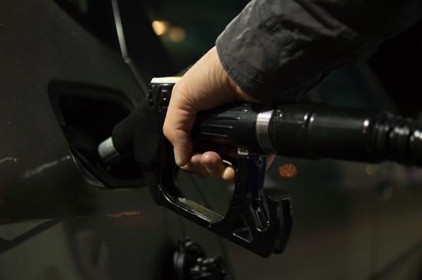 """全新清洁气体!研究人员研制出""""人工树叶"""" 或能产出新型液态燃料"""